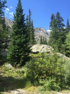McCullopugh Gulch trail (Breckenridge, CO, Sept./2016)